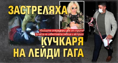 Застреляха кучкаря на Лейди Гага
