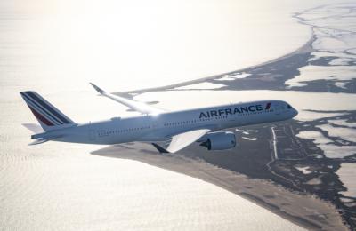 Индиецът, свалил самолет в София, нападнал стюард и пилот