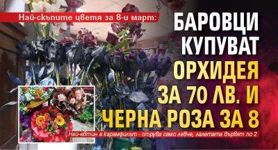 Най-скъпите цветя за 8-и март: Баровци купуват орхидея за 70 лв. и черна роза за 8
