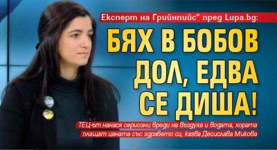 """Експерт на Грийнпийс"""" пред Lupa.bg: Бях в Бобов дол, едва се диша!"""