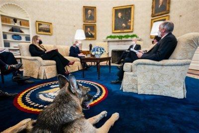 Кучетата на Байдън хапят, гонят ги от Белия дом