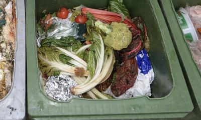 Изхвърляме над 920 млн. тона храна годишно