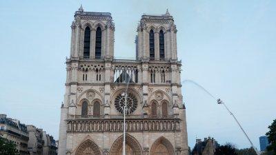 """Изсичат вековни дъбове за ремонта на катедралата """"Нотр Дам"""""""