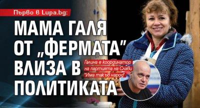 """Първо в Lupa.bg: Мама Галя от """"Фермата"""" влиза в политиката"""
