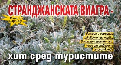 Само в Lupa.bg: Странджанската виагра - хит сред туристите