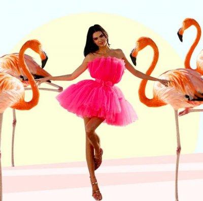 """Най-новата мода - поза """"фламинго"""""""
