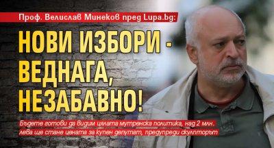 Проф. Велислав Минеков пред Lupa.bg: Нови избори - веднага, незабавно!