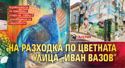 """На разходка по цветната улица """"Иван Вазов"""" (ГАЛЕРИЯ)"""