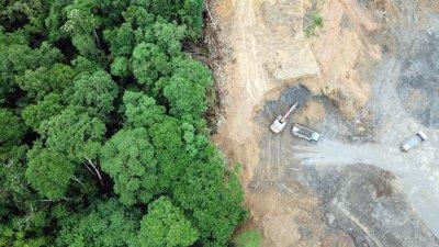 Едва 3% от екосистемите в света остават непокътнати