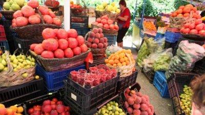 Спряха вноса на храни с токсини и пестициди