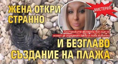МИСТЕРИЯ: Жена откри странно и безглаво създание на плажа