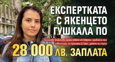 Експертката с якенцето гушкала по 28 000 лв. заплата