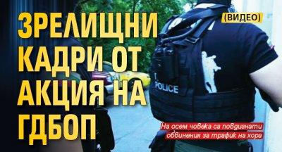 Зрелищни кадри от акция на ГДБОП (ВИДЕО)