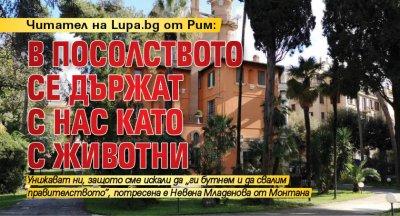 Читател на Lupa.bg от Рим: В посолството се държат с нас като с животни