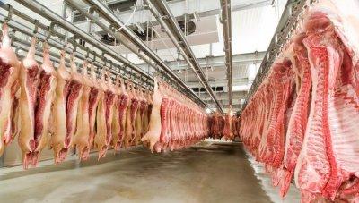 DW: Защо месото в Германия е толкова евтино?