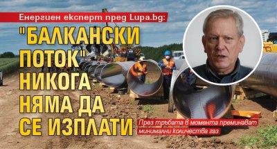 """Енергиен експерт пред Lupa.bg: """"Балкански поток"""" никога няма да се изплати"""