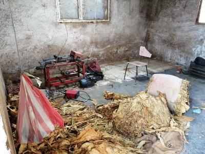Уникум: Закопчаха пловдивчанка за контрабанда на цигари