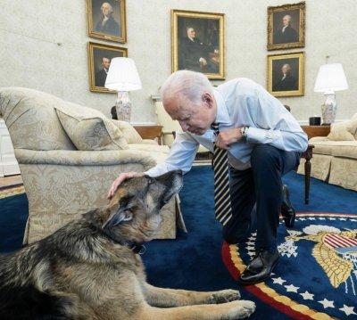 Семейство Байдън потъна в скръб: почина кучето им Чамп
