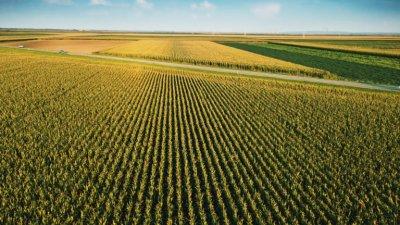 Рентата за изоставените земи до 3 пъти по-ниска