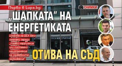 """Първо в Lupa.bg: """"Шапката"""" на енергетиката отива на съд (СНИМКИ)"""