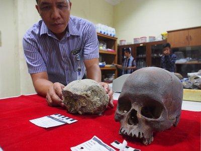 В Индонезия откриха останки на най-древния човек