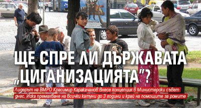 """Ще спре ли държавата """"циганизацията""""?"""