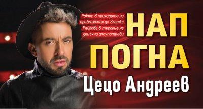 НАП погна Цецо Андреев