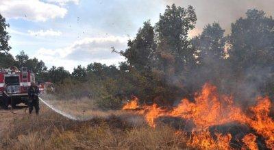 Пожар захапа 2 хил. дка гора в Хасковско