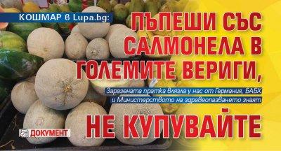КОШМАР в Lupa.bg: Пъпеши със салмонела в големите вериги, не купувайте (ДОКУМЕНТ)