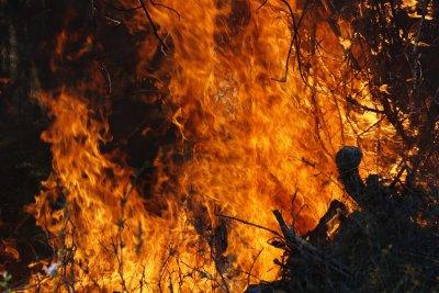 Четири са вече жертвите на горските пожари край Мармарис
