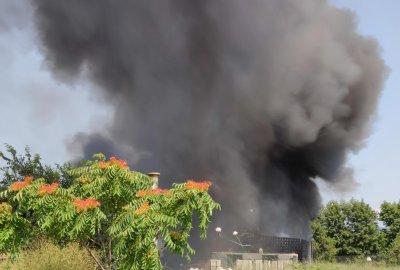 Захвърлен фас предизвикал пожара край Голямо Бучино