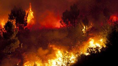 Заради пожари: Забраниха горските излети в РС Македония