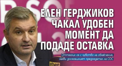 Елен Герджиков чакал удобен момент да подаде оставка