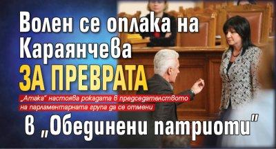 """Волен се оплака на Караянчева за преврата в """"Обединени патриоти"""""""