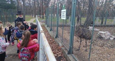 Зоопаркът в Хасково най-накрая получи лиценз
