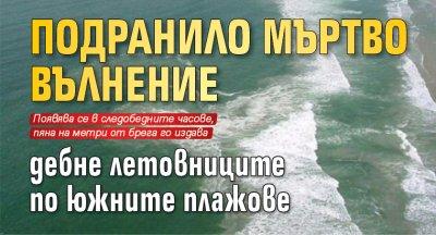 Подранило мъртво вълнение дебне летовниците по южните плажове