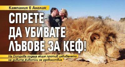 Кампания в Англия: Спрете да убивате лъвове за кеф!