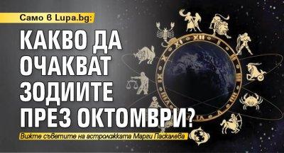 Само в Lupa.bg: Какво да очакват зодиите през октомври?
