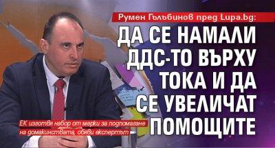Румен Гълъбинов пред Lupa.bg: Да се намали ДДС-то върху тока и да се увеличат помощите