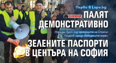 Първо в Lupa.bg: Палят демонстративно зелените паспорти в центъра на София (СНИМКИ)