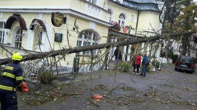 Ураган остави без ток 300 хиляди души в Чехия