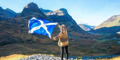 Магарешкият бодил – символ на Шотландия