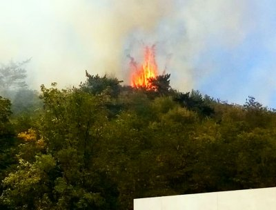 Извънредно! Пожар до ЖП тунела в Дупница (СНИМКИ)