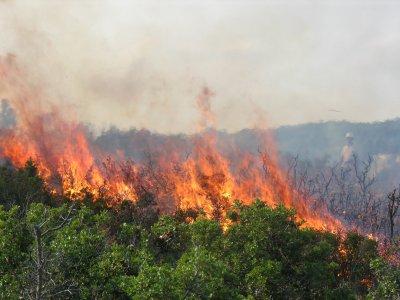 Екстремна опасност от пожари в 4 области