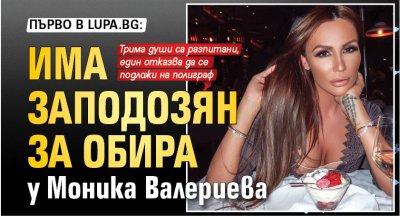 Първо в Lupa.bg: Има заподозян за обира у Моника Валериева
