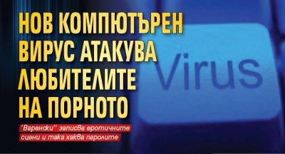 Нов компютърен вирус атакува любителите на порното