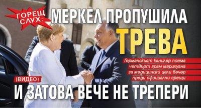 Горещ слух: Меркел пропушила трева и затова вече не трепери (ВИДЕО)