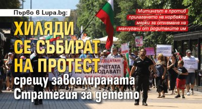 Първо в Lupa.bg: Хиляди се събират на протест срещу завоалираната Стратегия за детето