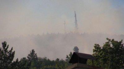 Пламъци отново лумнаха в гората над Реброво