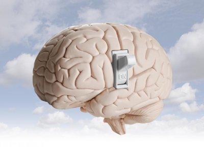 Чип в мозъка лекува затлъстяването